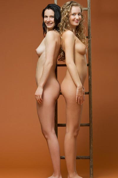 Girls and a Ladder