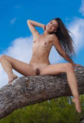 Lorena B