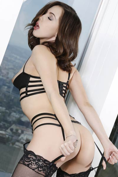 Dressed in hot lingerie this brunette dazzles us with her sex appeal