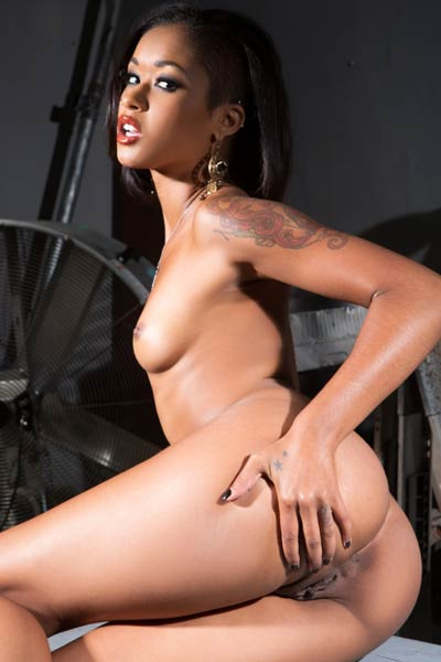 Glorious ebony babe Skin Diamond strips down and teases with her smooth curvy body