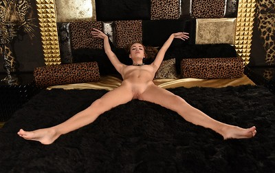 Morea in The Leopard Palace from MPL Studios