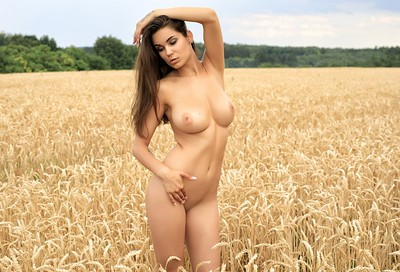 Faith in The Wheat from Photodromm