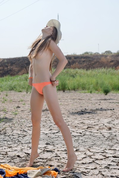 Hrizantema in Cattails from Erotic Beauty