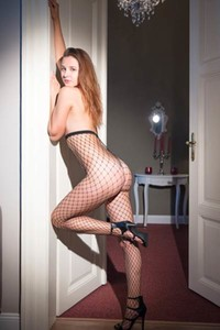 Fantastic young brunette looking good while she is posing wearing only fishnets