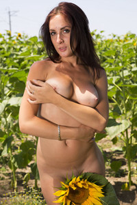 Astonishing brunette Viktoria C dazzles us with her sex assets as she poses in the sunflower field