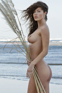 Wild brunette with natural body enjoys hot day in the beach totally naked