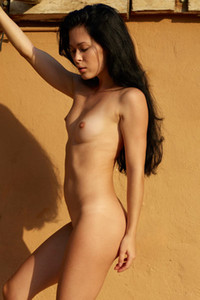 Magnificent dark haired babe poses completely naked by the wall