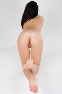 Gorgeous black haired girl Stefany G is spreading her legs and posing naked nicely