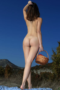 Brunette lady is showing us her amazing skinny body while she is on the picnic