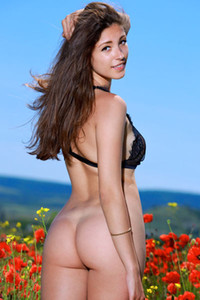Brunette hottie Rosella uninhibitedly poses naked in the poppies field flaunting her pale body