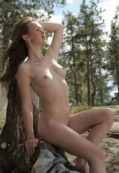 Vega in In a pine forest from Stunning 18